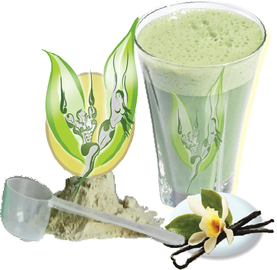 banderole-vegan-protein-shakes-glass.png