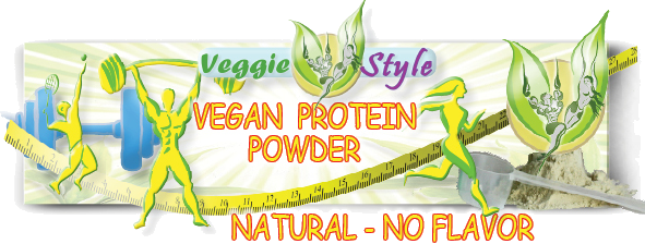 EN-PRODUCT-INFO-VEGAN-PROTEIN-POWDER-NATURAL